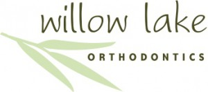 WILLOWLAKEfinallogo